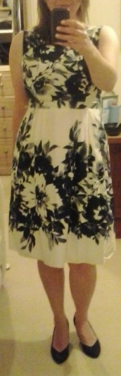 Sister's dress (2)