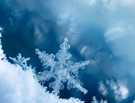 Digital composite of snowflakes and frost.