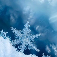 Snowflake Edge
