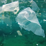 plastic in sea