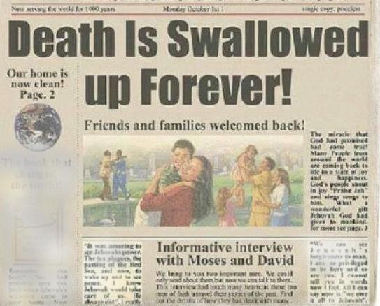 paradise newspaper
