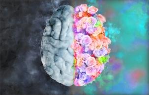 beautiful mind.jpg