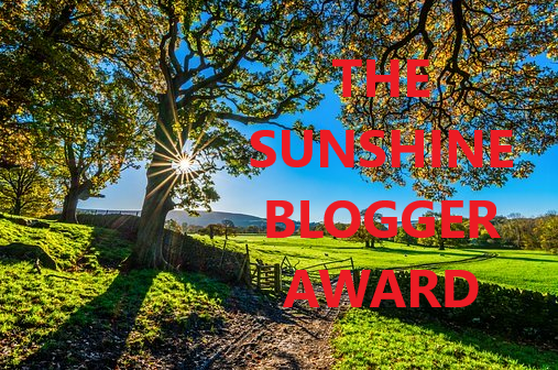 sunshine blogger 5